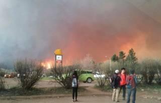 Лесные пожары в Канаде охватили уже 85 тысяч гектаров