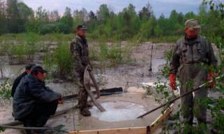 На Житомирщине найдены три нелегальные копи янтаря