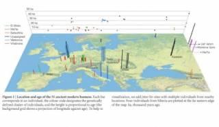 Ученые установили, что европейцы появились где-то недалеко от современной Бельгии