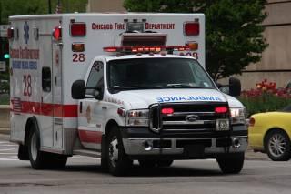 В США женщину привезли в больницу вместе с акулой, которая на нее напала