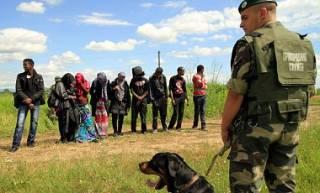 Депутаты увеличили срок пребывания нелегалов на территории Украины