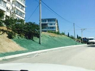 К приезду Медведева в Севастополе землю покрасили в... траву. Сообщивший об этом блогер, испугался собственной храбрости