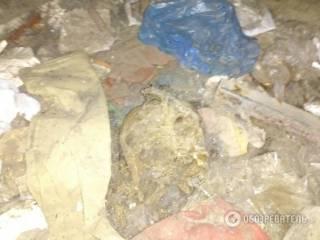 В подвале одного из столичных домов найдены человеческие останки