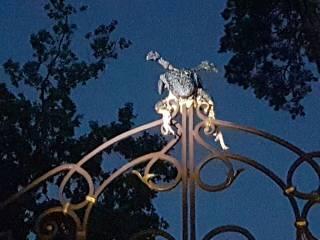 В Киеве и области своеобразно отметили день рождения Олега Сенцова