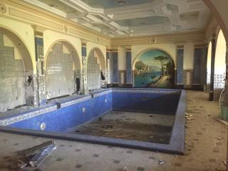 В Сети появились новые фото разграбленного имения Пшонки