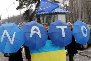 Украина для НАТО – не член, а любимая дочь