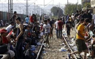 В Европу прибыли 250 тысяч мигрантов