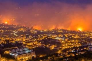 Масштабный пожар превратил уютную Мадейру в сущий ад