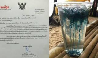 Пляжи Таиланда закрывают из-за нашествия ядовитых  корабликов