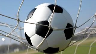 В Норвегии решили создать суперсборную из потомков мировых звёзд футбола... в пробирках