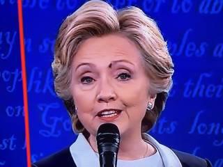Муха, севшая на Клинтон, заинтересовала даже ученых