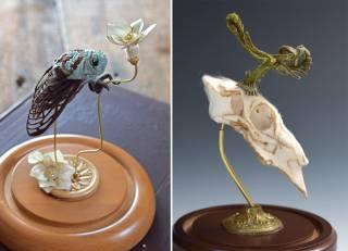 Эти анатомические скульптуры сделаны из шелка и шерсти
