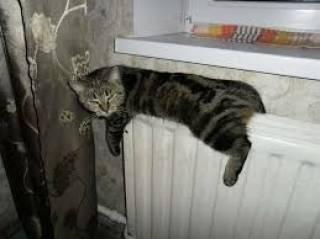 Сегодня батареи в квартирах киевлян начнут теплеть