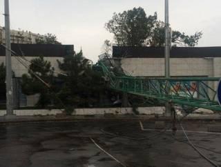 В Одессе из-за ветра падают деревья и строительные краны