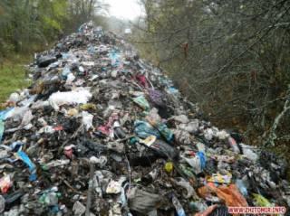 СМИ: Львовский мусор сбрасывают в заповеднике на Житомирщине