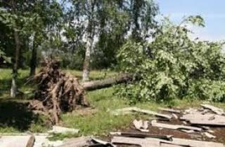 Непогода на Одесщине забрала жизни троих человек. В том числе и ребенка