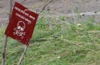 Занеделю пиротехники обезвредили более 500 боеприпасов наЛуганщине