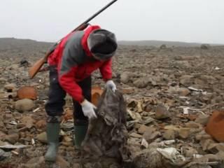Россияне умудрились найти следы нацистов даже на Северном полюсе