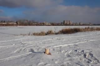 В Сибири спилили альтернативный памятник Ивану Грозному. Автор понадеялся, что с Путиным не поступят также