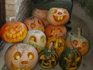 Зоопарк «Межигорье» призывает всех привозить свои тыквы после Хэллоуина