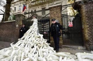 В Лондоне российское посольство забросали конечностями. Пластиковыми