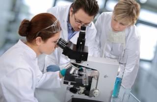 Ученые полагают, что вычислили центр человеческого сознания