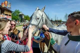 На выходных под Киевом покажут коней разных исторических пород