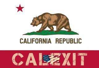 Калифорнийские активисты официально запустили процесс референдума по выходу из состава США