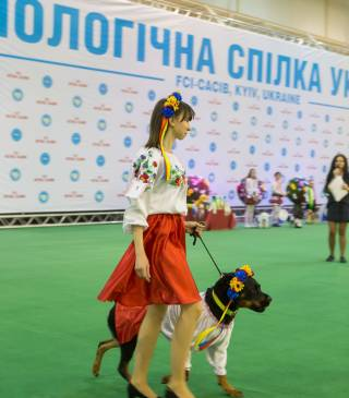 В этом году международные выставки собак в Киеве побьют все рекорды