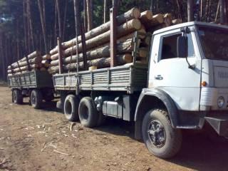 Порошенко пообещал инициировать разрешение вывоза за рубеж украинской древесины. ЕС хлопает в ладоши и обещает финансовую подачку