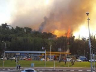 В Израиле третий день бушуют пожары. Украина решила помочь