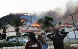 Кто и зачем сжигает Израиль?