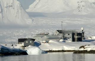В Житомире ищут желающих поработать в Антарктиде, просят быть готовым к долгосрочной командировке