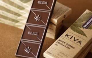 В США в честь Ильи Кивы вывели новый сорт марихуаны. Бывший главный борец с наркопреступностью рассказал, кто и зачем это сделал