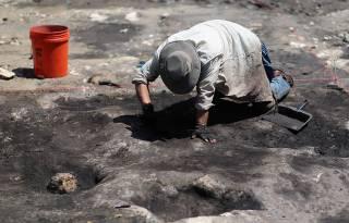 В Аргентине обнаружили останки древнего организма, а в Египте - странные саркофаги