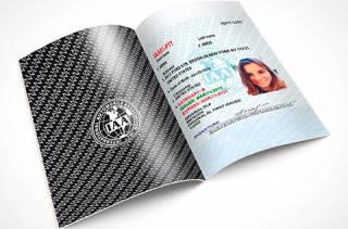 В Украине начали выдавать международные водительские удостоверения. Безо всяких экзаменов