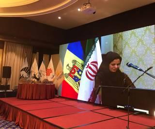 Молдавский президент оскандалился в Иране, выступая на фоне искаженного флага