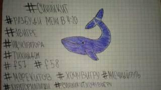 «Синий кит» едва не забрал жизнь еще одного подростка. В «игру» вовлекают и детей известных политиков