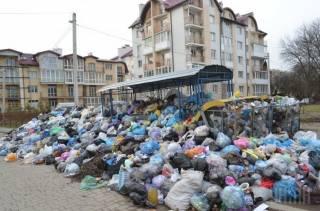 Львов продолжает утопать в мусоре