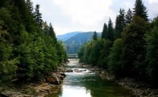 Украина начинает страдать от нехватки воды. Экологи били в набат еще 5 лет назад