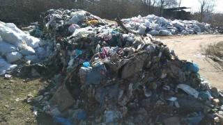 #Темадня: Cоцсети и эксперты отреагировали на идею превратить Чернобыль в свалку для львовского мусора