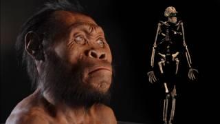 Ученые предположили, что первобытные люди появились гораздо позже, чем считалось ранее