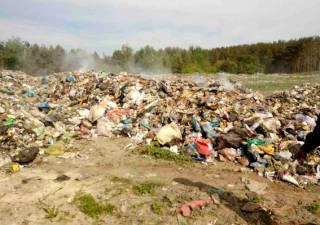 Львовский мусор не дает покоя жителям села на Житомирщине