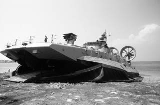 Украинский арсенал: «Зубр»