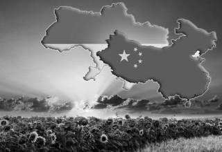 После США, или Почему Украине нужно дружить с Китаем