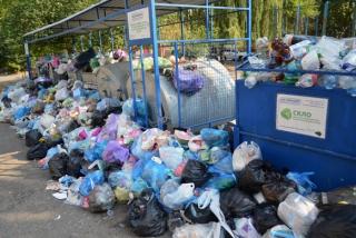 Из-за мусорного коллапса Садовый просит ввести во Львове чрезвычайное положение, а Березюк начал голодовку