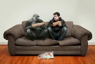 Ученые установили, чем человек отличается от других животных