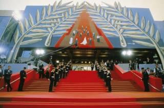 Каннские хиты в украинском прокате: появился официальный тизер