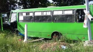 На Черкасщине пьяные школьники после выпускного угнали автобус и разгромили на нем кладбище