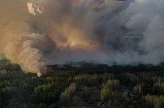 В Зоне отчуждения возле ЧАЭС уже почти сутки полыхает пожар. В Кабмине жалуются на российскую пропаганду